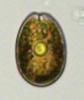 SNAP-132506-0007.png